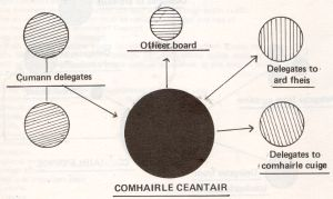 Comhairle ceantair structure